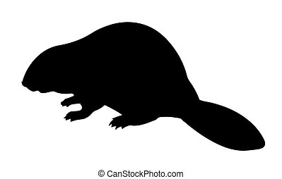 vector silhouette beaver on white background