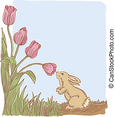 Spring Has Sprung - This little bunny stops to smell the...