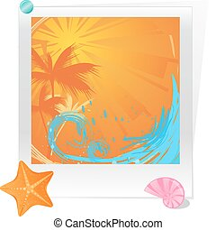 Palm sunset ocean with starfish and seashell