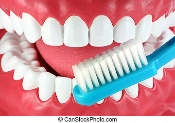 Brush your teeth! - Close-up of a mouth with nice white...