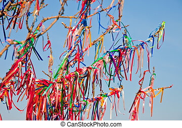 Wish Tree branches tied with colorful ribbons