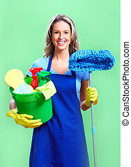 housewife cleaner Over green background