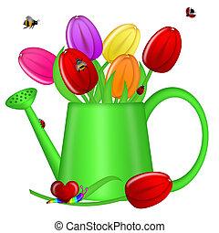 水まき, 缶, 春, チューリップ, 花