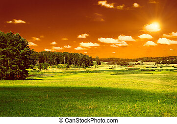 green field, forest and red sky