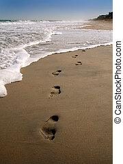 Footprints in the sand along the shore