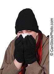 invierno, influenza