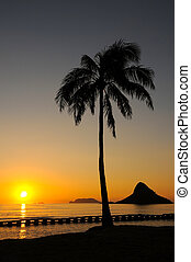 Chinamans Hat Oahu Hawaii - A beaitiful sunrise at Chinamans...