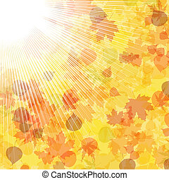 Autumnal leaf of maple and sunlight. EPS 8
