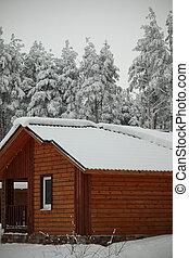 Maisons, hiver