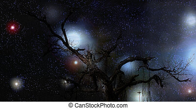 Mysterious Tree at Night
