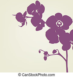 Orchid Branch Silhouette, Vector Illustration