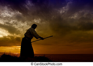 aikido - young aikido man fighter at sunset light