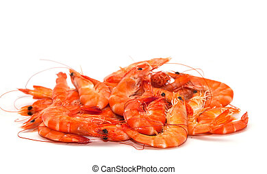 Shrimp on a white background.