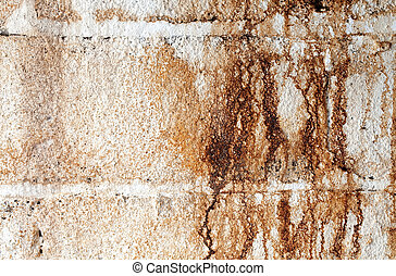 Water Stained White Cinder Block Wall - A close-up landscape...