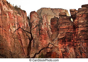 Great White Throne Red Rock Walls Zion Canyon National Park...