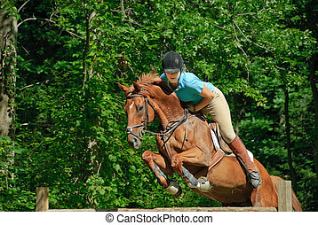 Horse Jumping - Female jumping her horse over hurdle