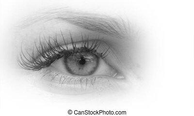 Beautiful women eye