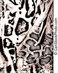animal skin background - leopard animal skin background