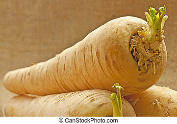 parsnip old forgotten vegetable