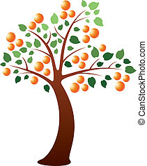 orange tree - vector orange tree