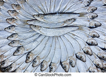 salted sardines - traditional preparation of mediterranean...