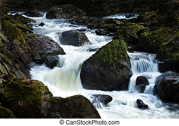 Creek with running water and stones (rocks)