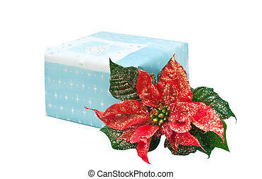 gift box with Christmas flower