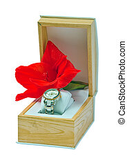 Gift set - womens watches and gladiolus