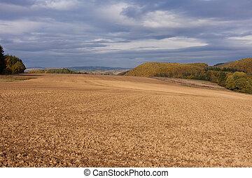 Pronto, campo, grão, semear, Inverno