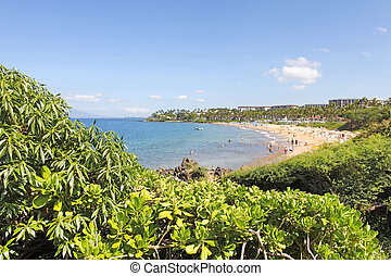Tropical coast with ocean and island view over the greenery....