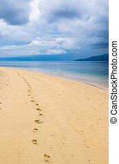 pegadas, tropicais, praia