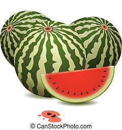 watermelons and a slice - vector watermelons and a slice