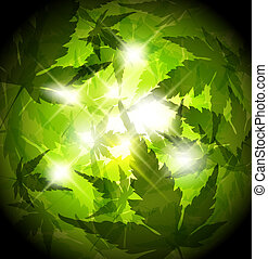 Fresh spring green leafs abstract background