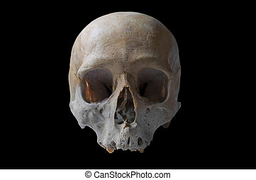 authentic human skull in front view isolated in black...