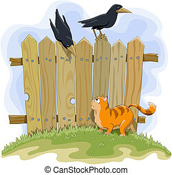 Fence - Red cat and crows on the background of the fence
