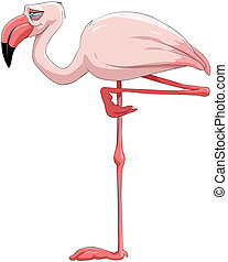 Flamingo - The pink flamingo costs on one foot