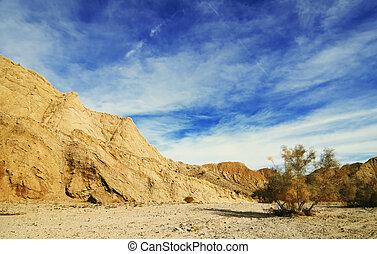 Anza Borrego Desert view (California, USA)