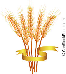 wheat ears and golden ribbon - bunch of vector wheat ears...