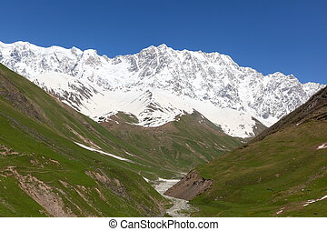 Mt. Shkhara. Upper Svaneti. Georgia - Alpine meadows at the...