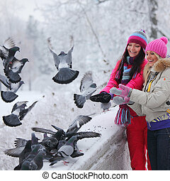 pigeon eat - winter women give food to the pigeon