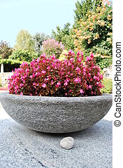 Stone bowl with flowers