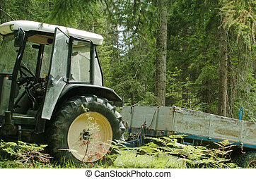 tractor trailer in the forest of pine and larch