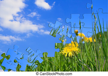 Green meadow with dandelions. Puzzle.