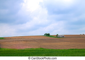 The field for tillage