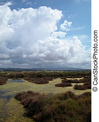 Old saltern landscape - Scenic landscape of old salt pans in...