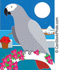 A Parrot in Paradise - An African Grey parrot resting on an...