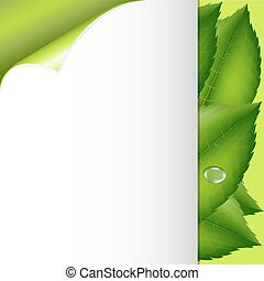 Green Leaves And Paper - Spring Poster, Vector Illustration