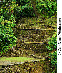Old Terraces in Colombia