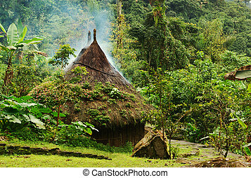 Small Kogi Hut in Colombia - Small kogi hut built in the...