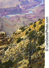 Grand Canyon - Views of the Grand Canyon on Colorado river...